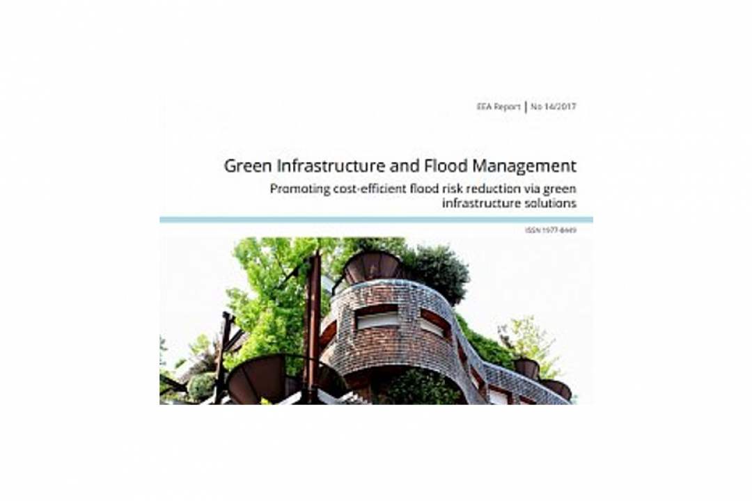 PROMOTING COST-EFFICIENT FLOOD RISK REDUCTION VIA GREEN INFRASTRUCTURE SOLUTIONS.
